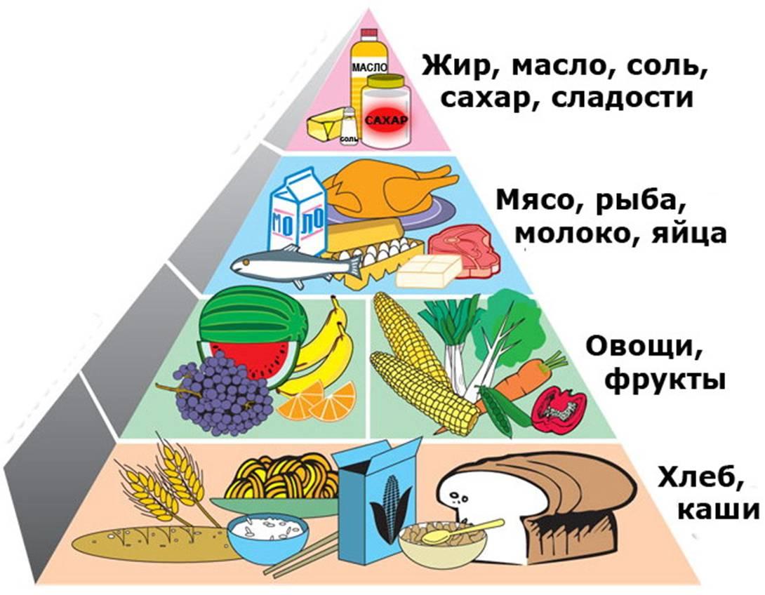 Диета протасова подробное описание меню